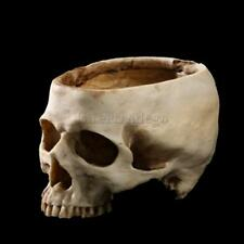 16.5cm Human Skull Head Flower Pot Planter Container Replica Home Evil Decor