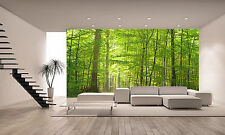 FOREST IN SUMMER Wall Mural Photo Wallpaper GIANT DECOR Paper Poster Free Paste