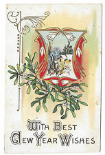 Best New Years Wishes Snow Drops Mistletoe Cottage Scene Embossed Postcard 1917