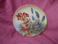 Border Fine Arts Flower Fairy plate  THE POLYANTHUS FAIRY