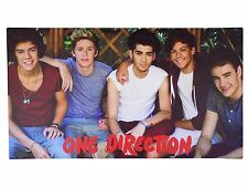 OFFICIAL LICENSED ONE DIRECTION CANVAS PICTURE ON WOODEN FRAME 55CM X 30CM X 2CM