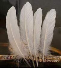 100Pc Natural Large Goose Pure White Feathers Jewelry Craft Wedding Party Decor