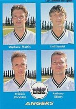 N°353 MOTTIN # SANDOI #  SCO.ANGERS VIGNETTE PANINI FOOTBALL 96 STICKER 1996