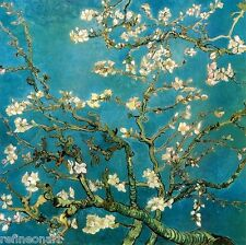 Handmade Oil Painting repro Van Gogh Almond Branches in Bloom