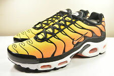 DS 2014 NIKE AIR MAX PLUS TXT SUNSET 7 SUPREME HYPERFUSE ATMOS SAFARI 95 90