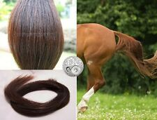 "Genuine Australian Horse Tail 80CM 32"" Dark Chestnut False Horse Tail EXTENDED"