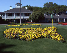 THE MASTERS Augusta National Golf Coarse Glossy 8x10 Photo Print Major Poster