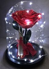 THE BEAUTY AND THE  BEAST NATURAL DEHYDRATED ROSE Women's Gift