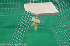 Shelf with Ladder & Dangler Toy Furniture Hamster Gerbil Rat Degu Cage