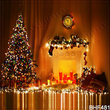 Christmas 10'x10' Computer/Digital Vinyl Scenic Photo Background Backdrop BHF481