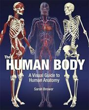 The Human Body: A Visual Guide to Human Anatomy, Brewer, Dr. Sarah, New Books