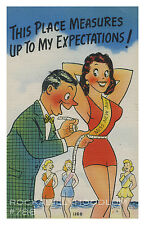 Pin Up Girl Poster 11x17 Cartoon Miss New York City Coney Island NYC
