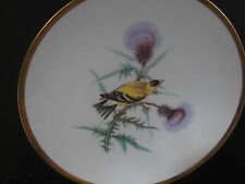 Hutschenreuther Bavaria Germany Audubon GOLDFINCH  BIRD PLATE  8""