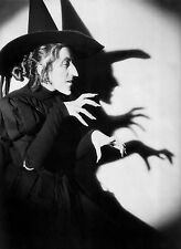 WIZARD OF OZ WITCH 8X10 GLOSSY PHOTO PICTURE