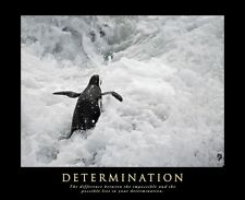 A1 SIZE - DETERMINATION MOTIVATIONAL INSPIRATIONAL POSTER ARTWORK PRINT