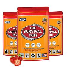 Emergency Survival Food Ration Bag 240 Calories Hurricane Disaster Meal MRE
