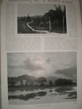Photo article farming Frank turner 300 acres at North Bristed 1902 ref Y3