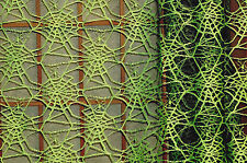 Halloween Spider Web Mesh Fabric Corded Webs Apparel   BFab Boo