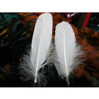 """100PC White Goose Feathers Decoration 6-8"""" For Home Party Wedding"""
