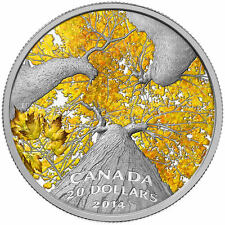 2014 Canada $20 Fine Silver Coin - Maple Canopy: Autumn Allure
