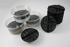 5 Lot Egg Incubation Tray & Deli Cups Reptile Bearded Dragon Crested Gecko Snake