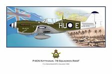 WWII RAAF P-40 Kittyhawk Aviation Art Profile Photo Print - Series I #1 of 3