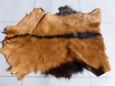 Nubian Goatskin leather hide WHISKEY/BROWN ULTRA THIN RAISED SPINE BROWN BACK