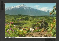 John Hinde Colour Postcard General View Tenerife Canary Islands