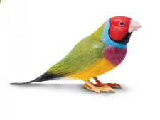 GOULDIAN FINCH Replica # 265129  FREE SHIP in USA w/ $25+ SAFARI,Ltd. Products