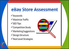 eBay Store Assessment REPORT Consulting Help Sales Traffic Custom REVIEW