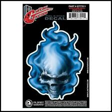 D'Addario Planet Waves Guitar Tattoo Decal Blue Flame Skull GT77011 New