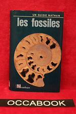 Les fossiles - Giorgio Teruzzi