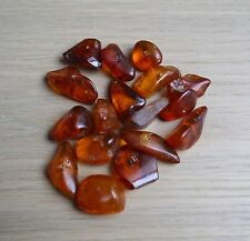 20 Grams Cognac  Natural Baltic Amber Loose Beads With Holes. about 17-20 beads