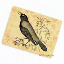 Crow Deco Magnet, Decorative Fridge Refrigerator Mini Gifts Animal Bird