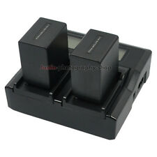 LCD-Display Charger +2x Battery for Sony NP-FH100 NP-FV100 DCR-HC HDR Camcorder