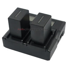 LCD-Display Charger +2x Battery for Sony NP-FV100 NEX-VG900 VG30 VG20H Handycam