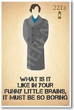Sherlock Holmes - What Is It Like In Your Funny Little Brains - NEW Humor POSTER