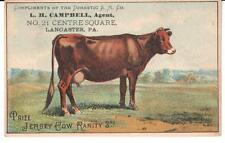 ANTIQUE TRADE CARD DOMESTIC SEWING M. PRIZE JERSEY COW RARITY 3RD LANCASTER, PA