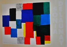 SONIA DELAUNAY  Expo 1970 - Galerie Jacques Damase AFFICHE