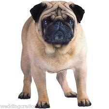 Paper House Productions Photo-Real PUG Die-Cut Magnet - NEW in Package