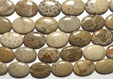 "15"" Strand  ""Petoskey""  FOSSIL CORAL 18x25mm Oval Beads"