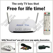 """Great Bee"" Arabic TV box IPTV support 400 Arabic channels Free for life!"