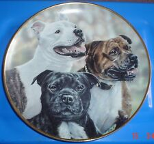 Danbury Mint Collectors Plate Staffordshire Bull Terrier PLAYFUL TRIO