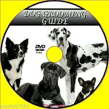DOG GROOMING VIDEO DVD EASY 2 FOLLOW CARE TUITION BATHING BRUSHING &EYE CARE NEW