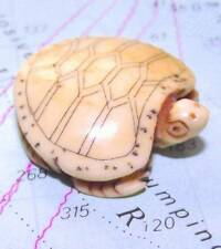 Japanese Detailed Hand Carved Scrimshaw Netsuke Bone Turtle Tortoise Terrapin