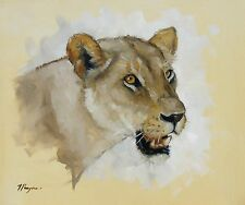 Original Oil painting - wildlife art - lion lioness portrait - by j payne