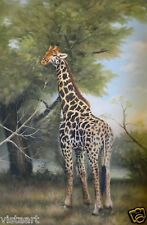 "Oil Painting on Stretched Canvas ""Colossal Giraffe""- 24x36"""