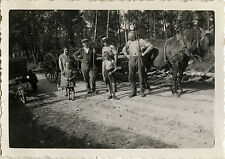 PHOTO ANCIENNE - VINTAGE SNAPSHOT - ANIMAL CHEVAL TRAIT ATTELAGE - HORSE 1935
