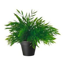 "IKEA artificial potted plant bamboo 11x4"" green lifelike nature herb deco Fejka"