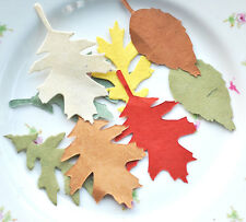 100 Tree-free Paper Leaves in Autumn Colours